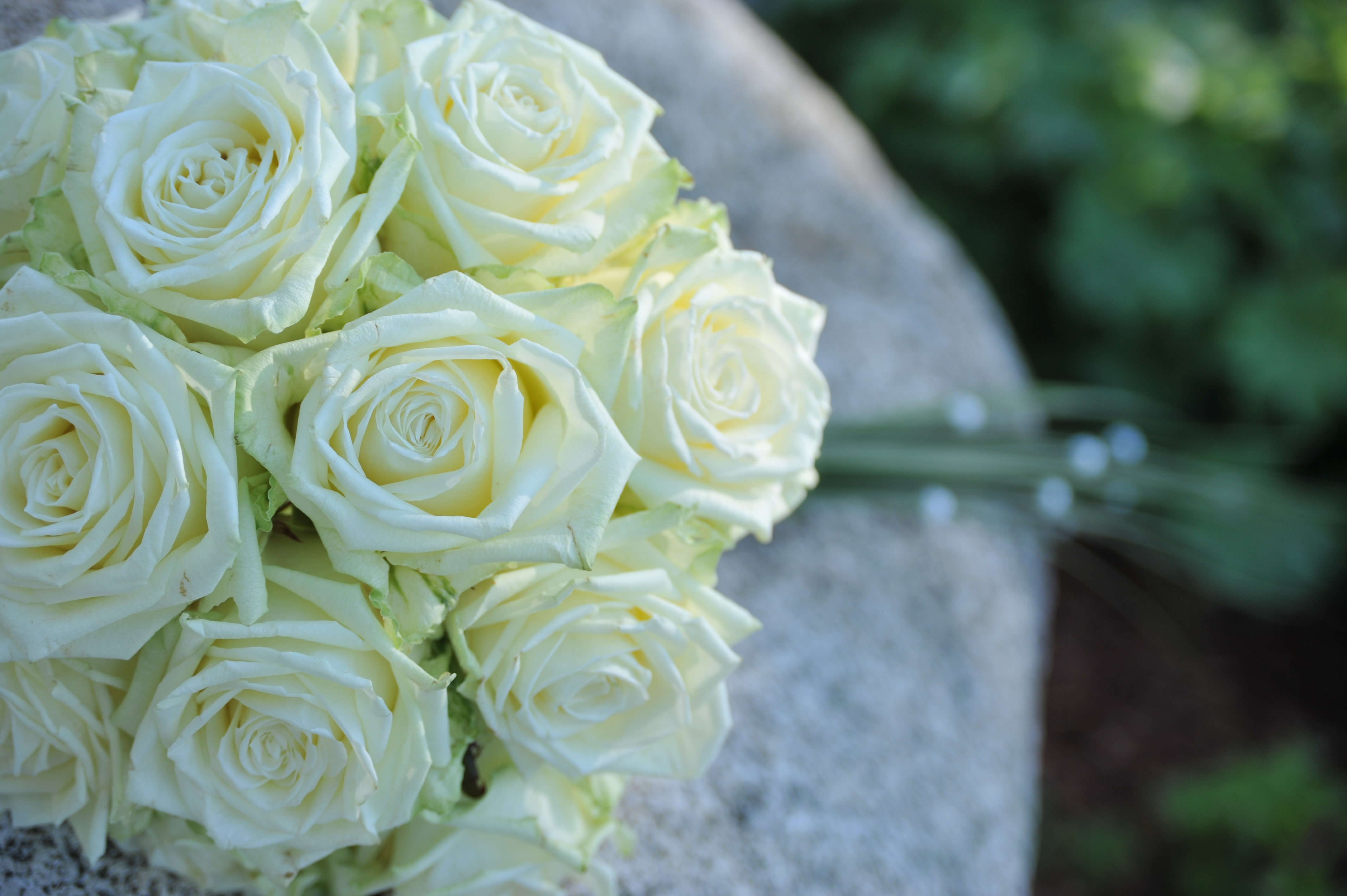 Hochzeitsfloristik Brautstrauss mit langem Staengel der aus weiss gelben Rosen besteht und rund ist am Stein liegend